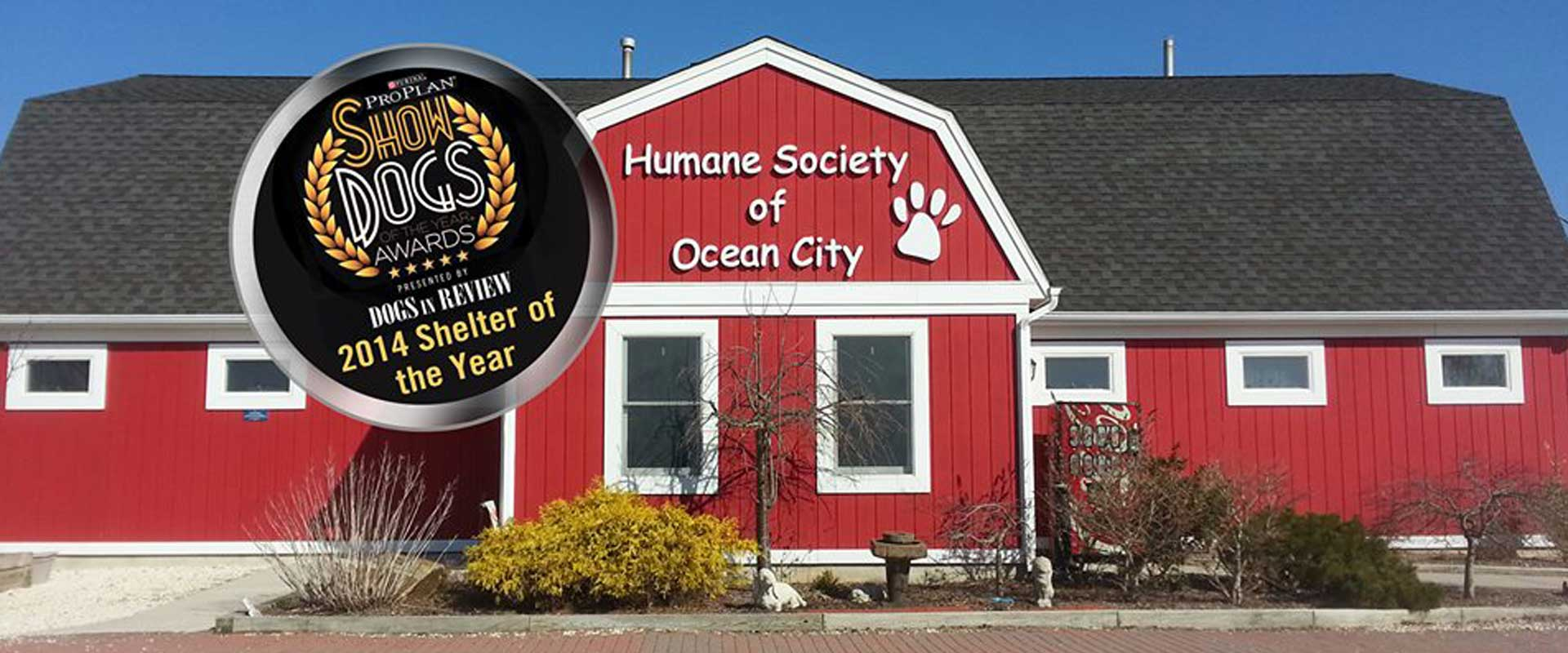 Humane Society of Ocean City - New Jersey - Adoptions